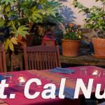 Cal Nunci