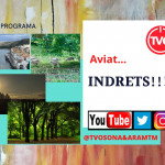 INDRETS!!!